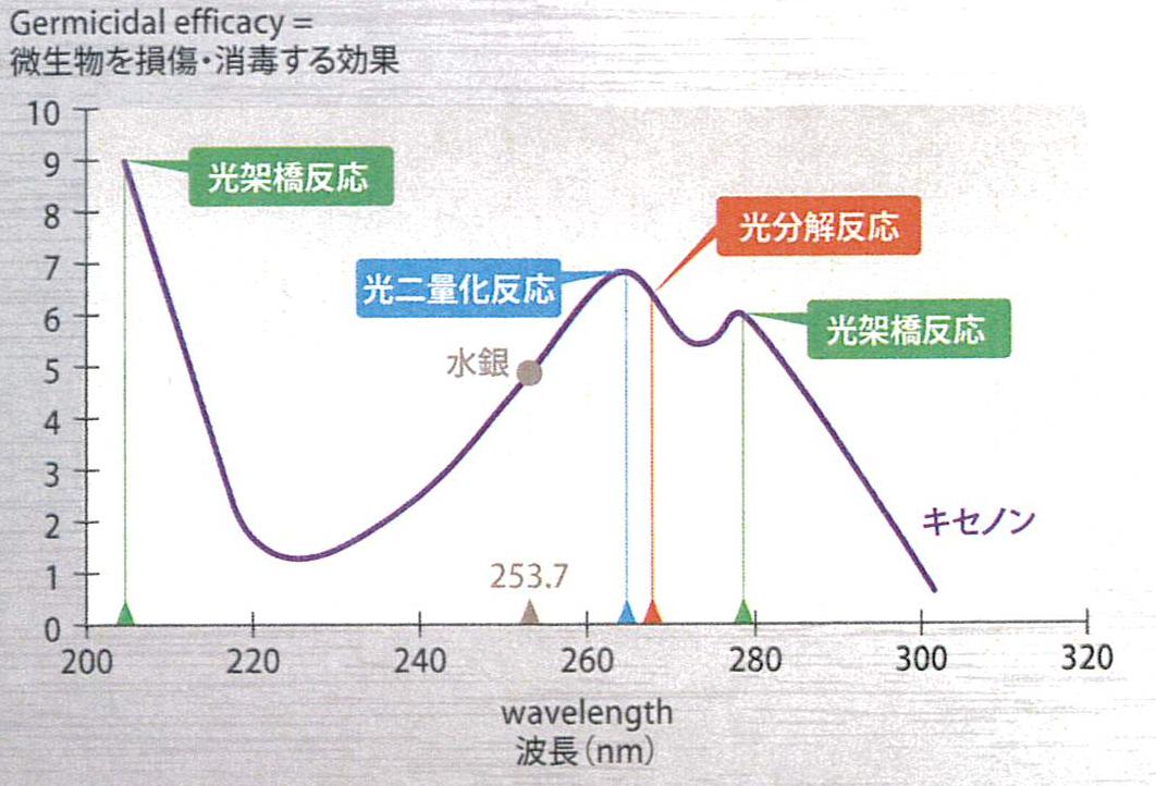 紫外線殺菌ランプ装置